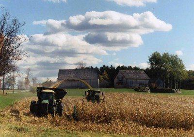 Tiashoke Farm harvesting corn at Historic Barns of Nipmoose, Photograph by Constance Kheel