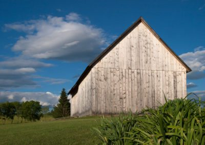 Views of the Nipmoose Farm, 2010, Brandt Bolding Photography