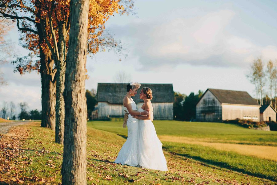Wedding portrait in the field, Lisa Woods Photography